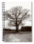 Winter Bare Spiral Notebook