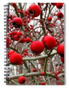 Winter Berryscape Spiral Notebook