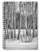Winter Birches Spiral Notebook
