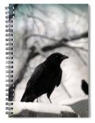 Winter Blackbirds Spiral Notebook