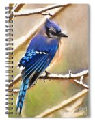 Winter Blue  Spiral Notebook