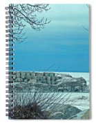 Winter Blues Spiral Notebook