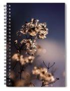 Winter Blues Spiral Notebook