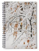 Winter Branches Spiral Notebook