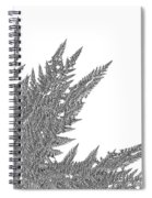Winter Branches By Jammer Spiral Notebook