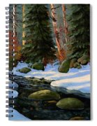 Winter Brook Spiral Notebook