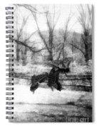 Winter Butterflies Spiral Notebook