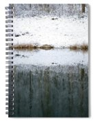 Winter By The Lake Spiral Notebook