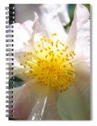 Winter Camellia Spiral Notebook