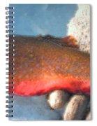 Winter Catch Spiral Notebook