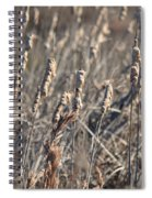 Winter Cattail Abstract Spiral Notebook