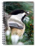 Winter Chickadee With Seed Spiral Notebook