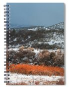 Winter Colors 3 Spiral Notebook