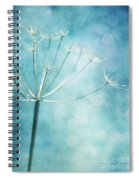 Winter Colors Spiral Notebook
