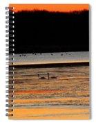 Winter Dawn Swans Spiral Notebook