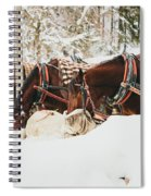 Horses Eating In Snow Spiral Notebook