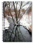 Winter Ditch Spiral Notebook