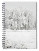 Winter Doe Spiral Notebook