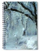 Winter Dreams Spiral Notebook