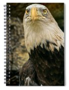 Winter Eagle Spiral Notebook