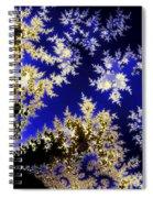 Winter Evening Spiral Notebook