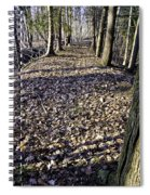 Winter Fall On The Trail Spiral Notebook
