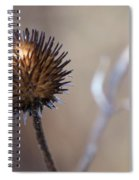 Winter Flower Spiral Notebook