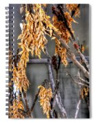 Winter Foliage Old House 13126 Spiral Notebook