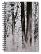 Winter Forest 1 Spiral Notebook