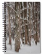 Winter Forest Abstract II Spiral Notebook