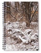 Winter Forest Panorama Spiral Notebook