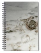 Winter Garden Guardian Spiral Notebook
