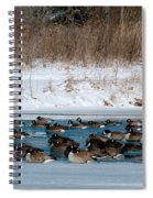 Winter Geese - 02 Spiral Notebook