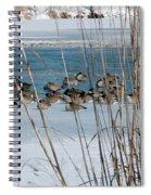 Winter Geese - 04 Spiral Notebook