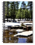Winter Gives Way To Spring 32626 Spiral Notebook