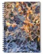 Winter Glory Spiral Notebook