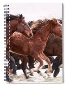 Winter Hardened Wild Horses Spiral Notebook