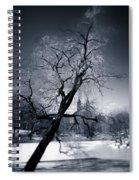 Winter In Central Park Spiral Notebook