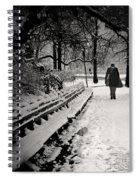 Winter In Central Park Spiral Notebook