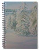 Winter In Gyllbergen Spiral Notebook