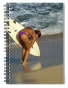 Winter In Hawaii 3 Spiral Notebook