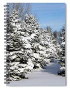 Winter In The Pines Spiral Notebook