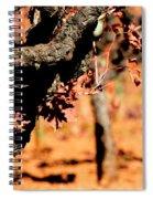 Winter In The Vineyard Spiral Notebook