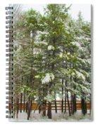 Winter Landscapes Spiral Notebook