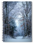 Winter Lane Spiral Notebook
