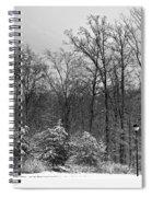 Winter Light Post Spiral Notebook