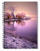 Winter Light Reflected Spiral Notebook