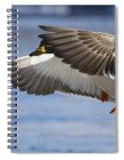 Winter Mallard Spiral Notebook