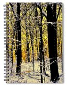 Winter Mood Lighting Spiral Notebook