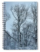 Winter Morning View Spiral Notebook